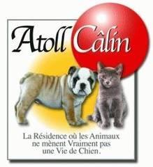 Educateur-Comportementaliste Canin depuis 2001